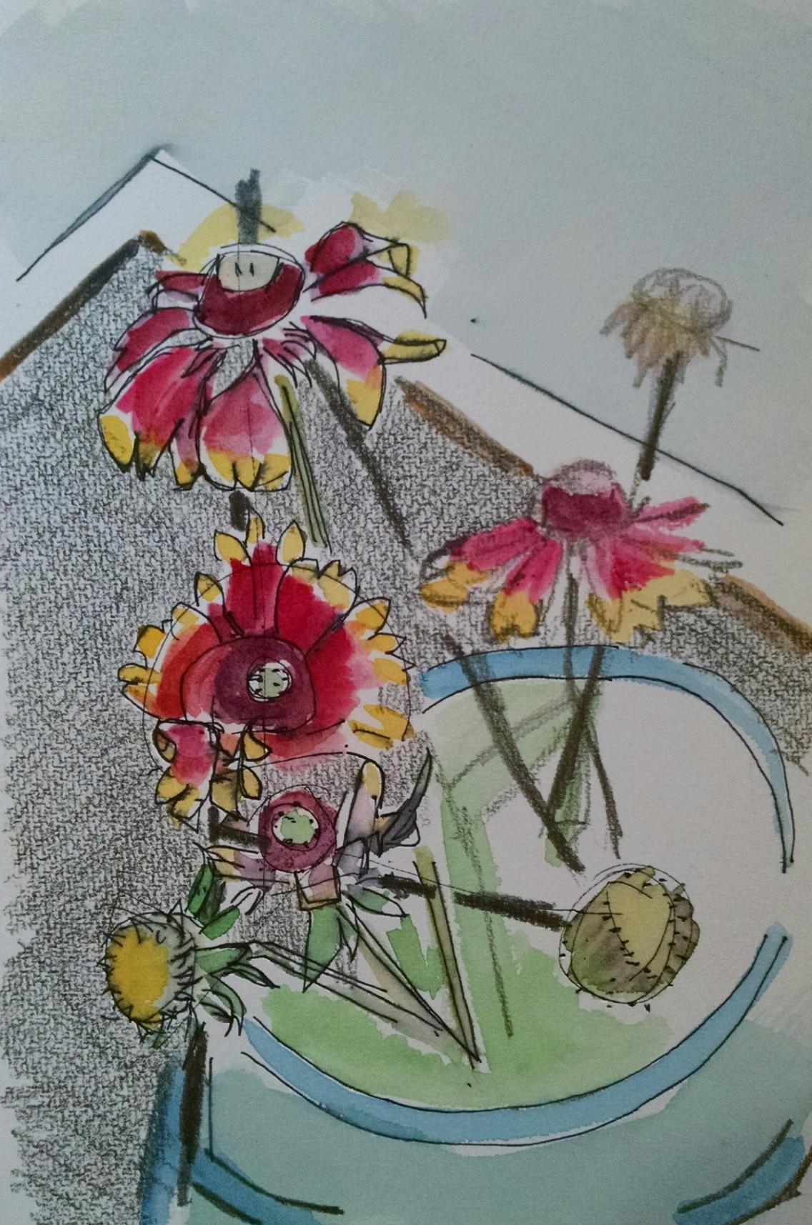 blanket flowers 3